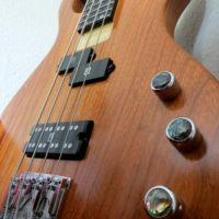 Joz Bass 1